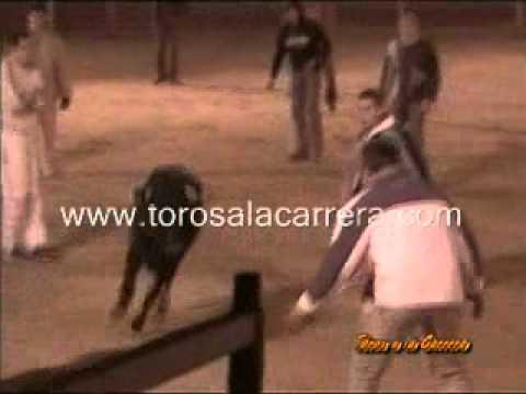 Capea y vacas nocturnas Ajalvir 2005