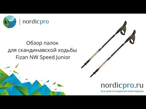 Fizan NW Speed Junior / Палки для скандинавской ходьбы