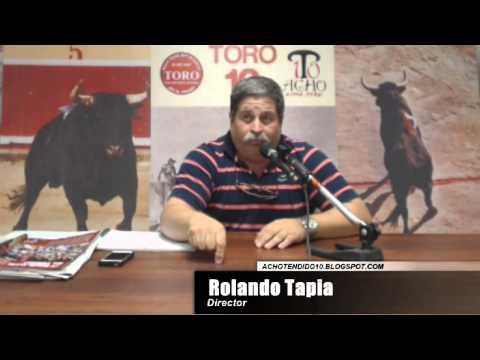 TORO TENDIDO 10 (25.11.14)