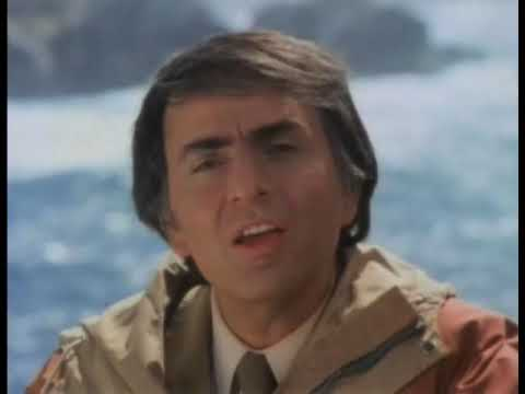 Carl Sagan - THE sentence !