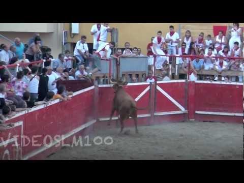CORTES vacas-novillos en plaza 24 septiembre 2012