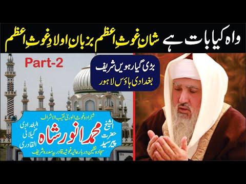 Pir Syed Muhammad Anwar Shah Gilani Qadri Razzaqi (Giyarveen Sharif 2011) Clip 2