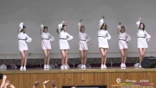 육군 28사단 무적태풍부대 칠학년일반 하얀바람 공연 영상