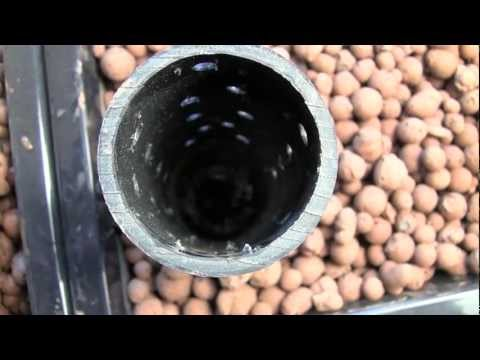 Aquaponics system: How to build a desktop aquaponics system for indoor gardening. Aquaponics guide.