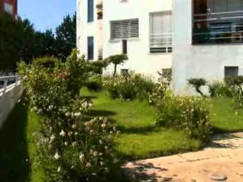Telhado verde do Cantinho no Biosfera