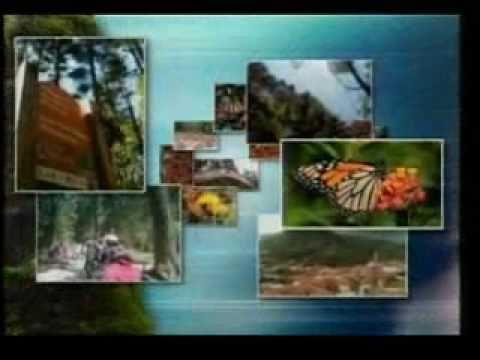 Centro de Cultura para la Conservación, Sierra Chincua