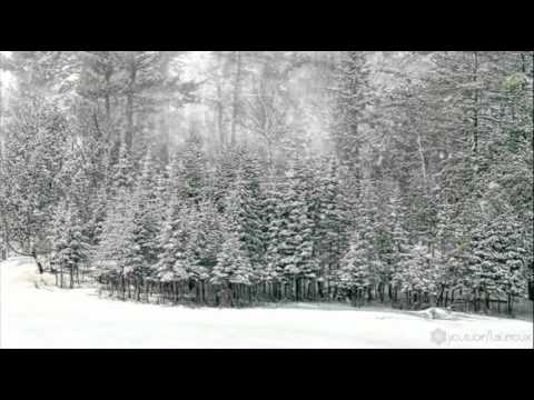 FREE Snow Motion Background - Trees in the Snow HD
