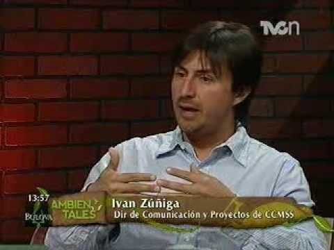 Entrevista sobre el manejo de los bosques