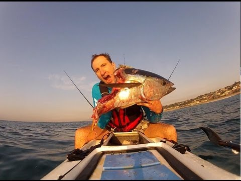 Kayak fishing - fight for a tuna with a shark