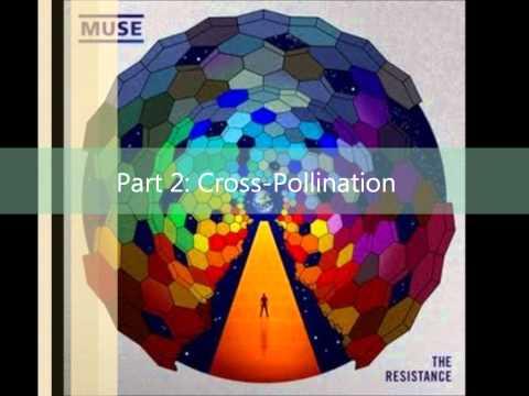 Muse-Exogenesis Symphony Full