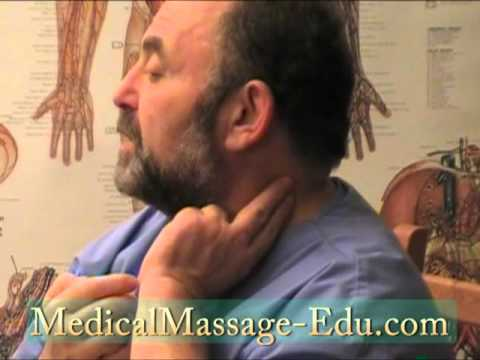 Self Massage Neck and Upper Back Part 1