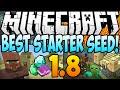 Minecraft 1.8 Seeds - BEST STARTER SEED! Diamonds, Dungeon & Village AT SPAWN! (Minecraft 1.8) 2014