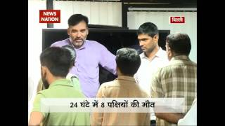 Bird flu scare: Delhi zoo remains temporarily closed