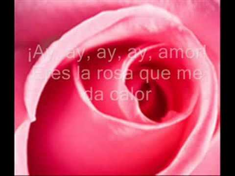 Juan Luis Guerra: TE REGALO UNA ROSA letra mix