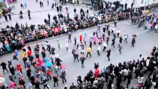 Перед открытием новогодней ёлки в Житомире состоялся флешмоб