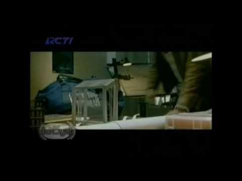 Vierra - Takut -Z0-iuxo3HHI