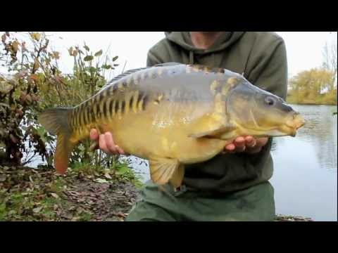 Winter Carp Fishing at Richworth Linear Fisheries