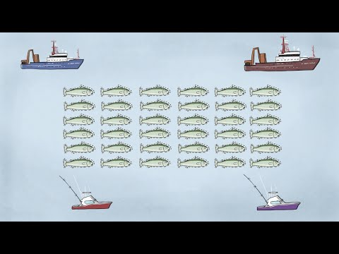 Fisheries Economics & Policy: Intro to Fisheries Management