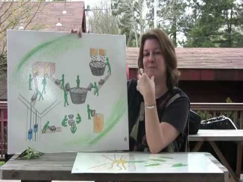 Montessori Elementary: The Botany Charts