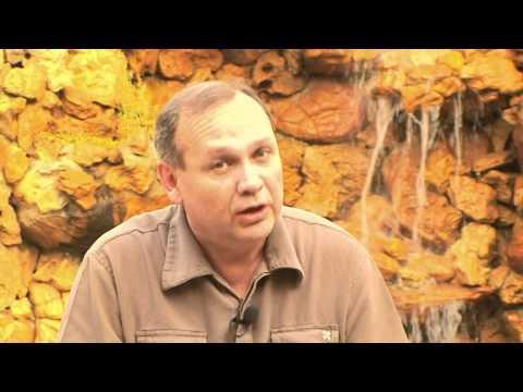 DEFORESTACION DEL CHACO PARAGUAYO-GUYRA PARAGUAY