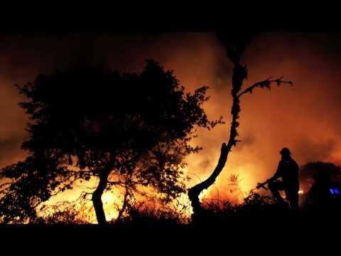 Deforestacion utm