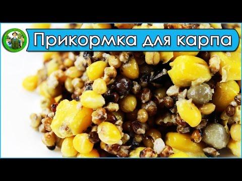 Прикорм пьяная кукуруза видео