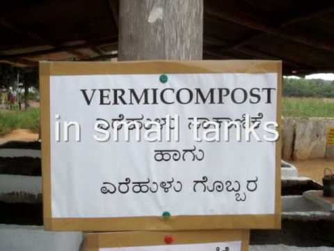 Vermicompost- Earthworms at work in Bangalore
