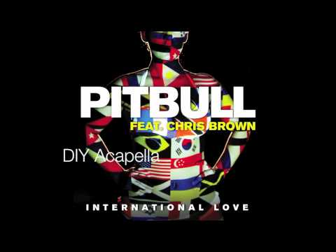 Pitbull ft. Chris Brown - International Love (DIY Acapella) [+ Download Link]