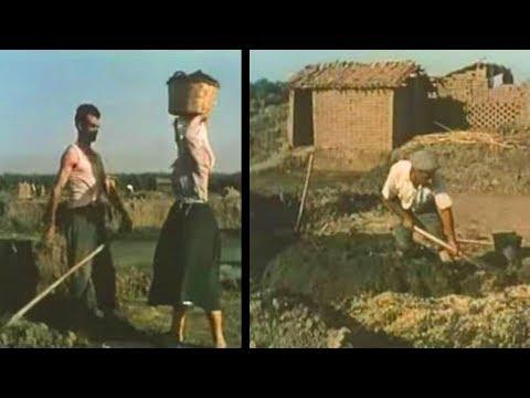 Produzione di tegole e mattoni nel Campidano di Oristano 1955 [Istituto LUCE]