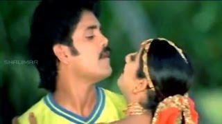 Azad Movie || Hai Hai Nayakaa Attamma Koduka Video Song