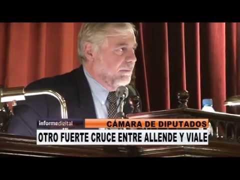 <b>Allende ret� a Viale.</b>Un fuerte cruce se produjo en la C�mara de Diputados