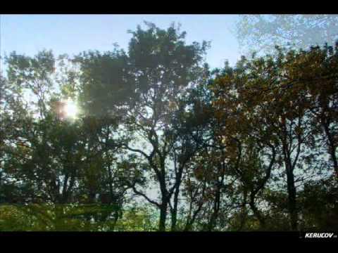 VIDEOCLIP Traseu MTB Bucuresti - Magurele - Clinceni - Chiajna - Lacul Morii