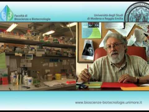 Facoltà di Bioscienze e Biotecnologie - UniMORE