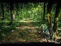 VIDEOCLIP Traseu SSP Bucuresti - Padurea Baneasa - Bucuresti [VIDEO]