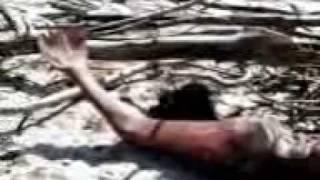 Geger,... penemuan Putri duyung Putri duyung ini di temukan di pantai Balambangan di utara pulau Borneo /Sabah (Malaysia)Sekitar akhir tahun 2009. Ketika di temukan Putri duyung ini sudah dalam keadaan Mati kering di pinggir pantai.