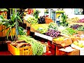 Cute Vegetarian Shops in Little India of Singapore