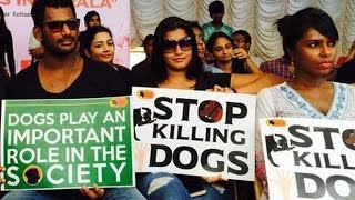 Watch Vishal angers Malayalis for Opposing Dog Killing Red Pix tv Kollywood News 28/Jul/2015 online