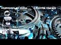 Фрагмент с конца видео 10 ДЕРЕВЬЕВ, В СУЩЕСТВОВАНИЕ КОТОРЫХ СЛОЖНО ПОВЕРИТЬ