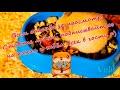 Фрагмент с конца видео Покупка хомячка Винтика и подготовка к его появлению дома