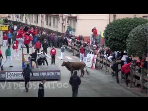 ARNEDO vacas calle sabado 16 marzo 2013