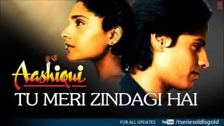 Tu Meri Zindagi Hai Full Song (Audio)  Aashiqui  Rahul Roy, Anu Agarwal