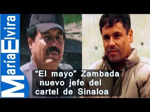 El mayo Zambada nuevo jefe del cartel de Sinaloa, #mariaelvira.