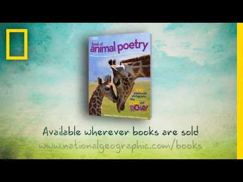 """A Reading by J. Patrick Lewis from """"Animal Poetry"""""""