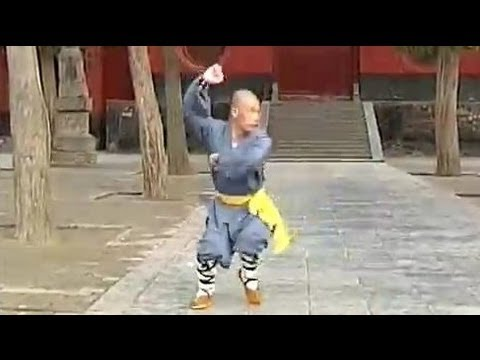 Shaolin Cannon Quan