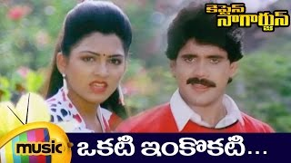 Okati Inkokati Telugu Video Song | Captain Nagarjun