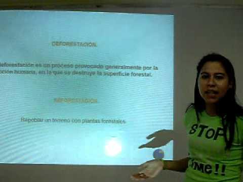 MOVIMIENTO DE TIERRA. AVI