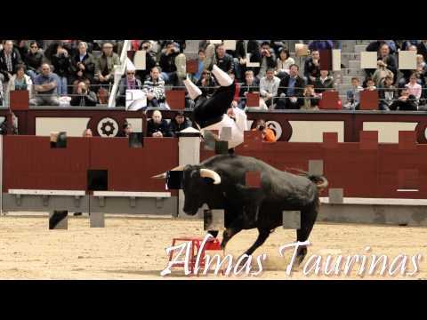 Concurso de recortes goyesco las Ventas 2012