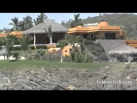 La Paz, B.C.S. Mexico. . .Mike Alperin