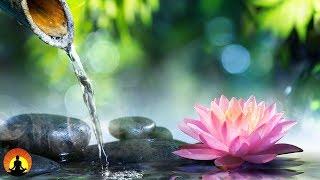 6 Hour Zen Meditation Music: Calming Music, Relaxing Music, Soothing Music, Relaxation Music ☯2266