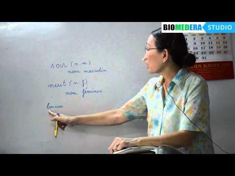Bài 3: Danh từ giống đực và danh từ giống cái - Le genre des noms